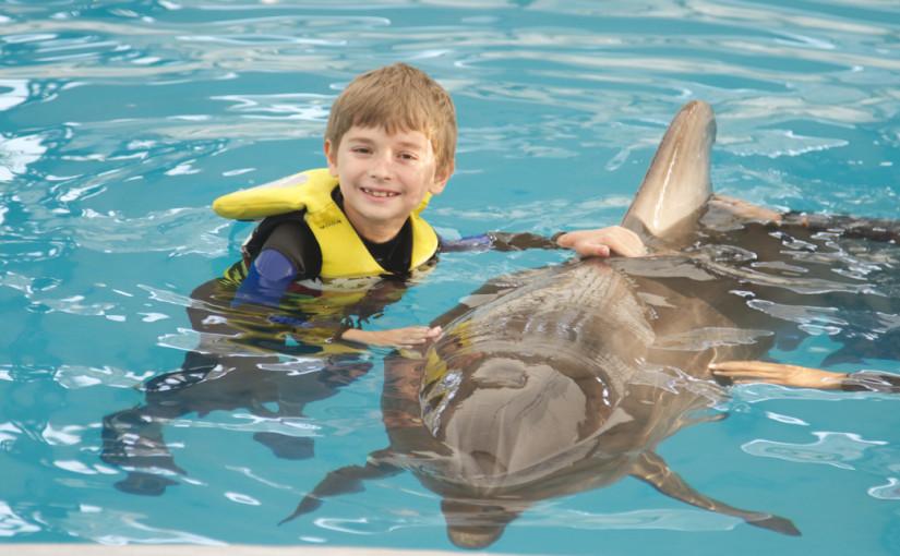 Susțineți campania Terapie cu delfini pentru David